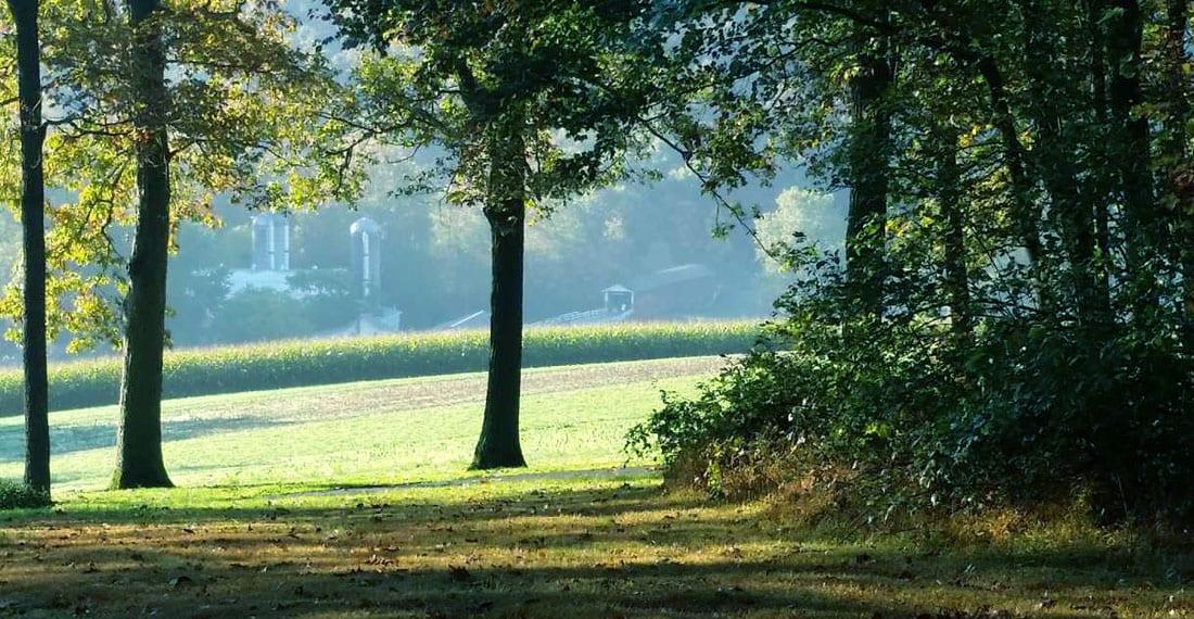 StrasburgScooters_Home_Slideshow_0001_Blue Meadow Slider